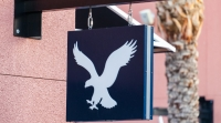 beststockfoto-shutterstock-com-american-eagle-